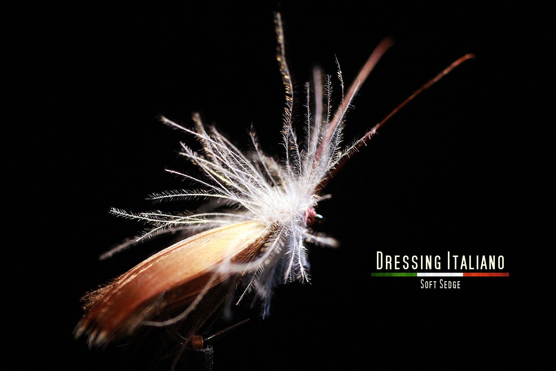 SOFTSEDGE